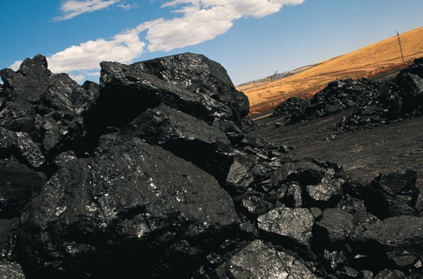 Экспертиза каменного угля
