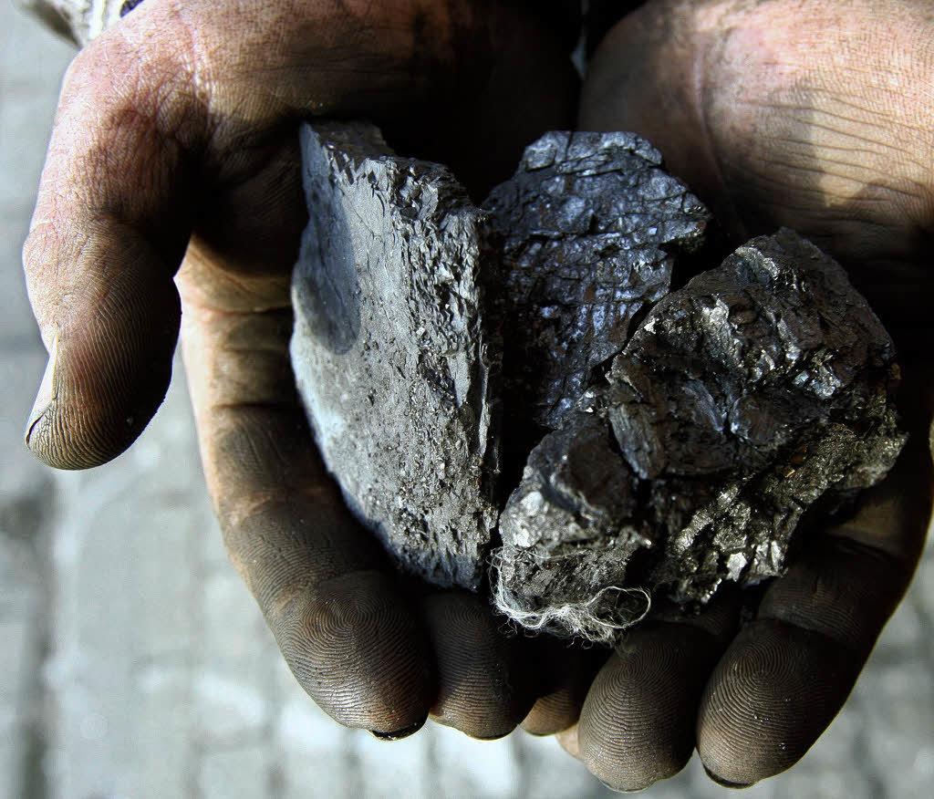 Петрографические свойства каменных углей